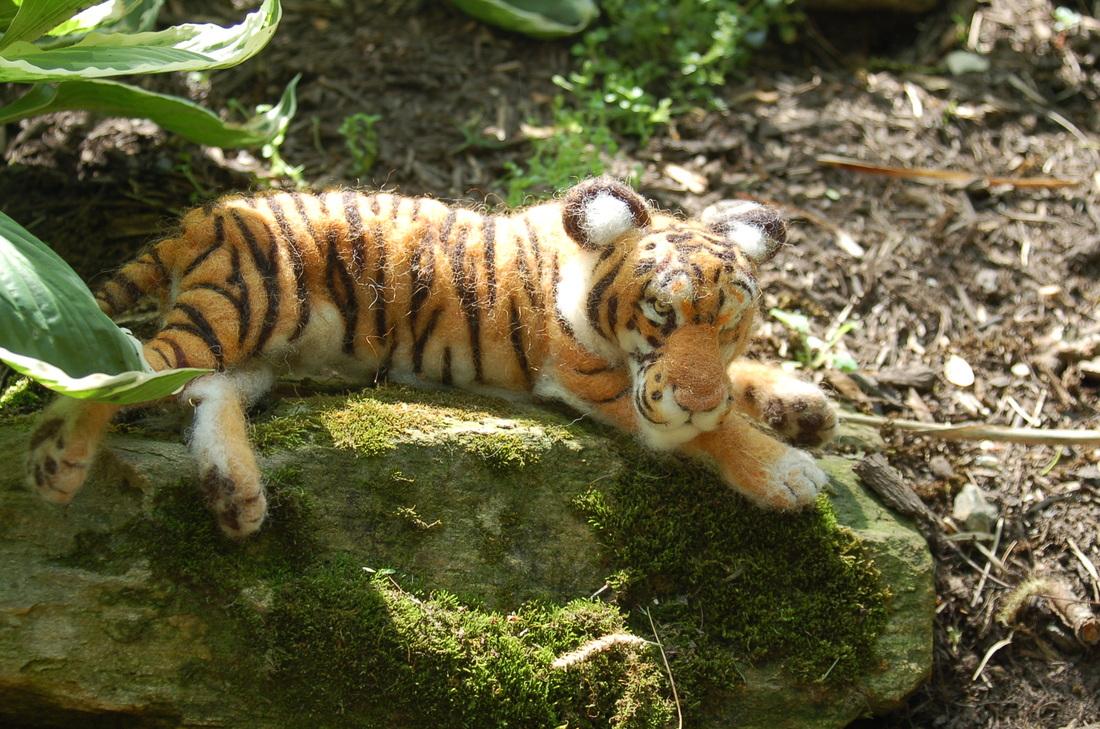 Tiger by Sara Renzulli