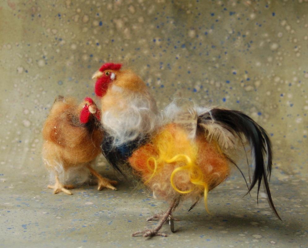 Chickens by Sara Renzulli