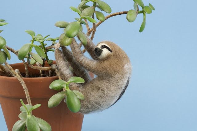 Kiyoshi Mino - Sloth